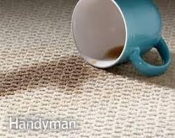 Best Bedroom Carpet by Best 20 Buy Carpet Ideas On Pinterest Carpet Styles Carpet