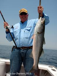 articles cape cod fishing charters