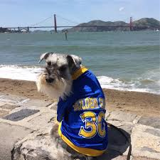Warriors In Pink Clothing Do U0027s And Don U0027ts Golden State Warriors 2017 Victory Parade And