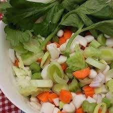 le cerfeuil en cuisine recette salade de navets et carottes au cerfeuil