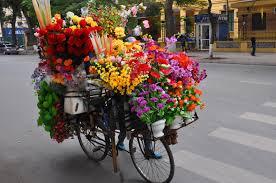 flower bike power reno rambler