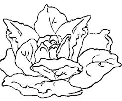 dessin legumes d u0027automne