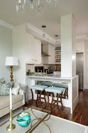 modern kitchen remodel for stylish minnesota condo norma budden