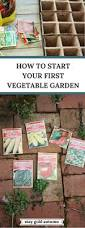 Vegetable Garden Containers by Best 25 Vegetables Garden Ideas On Pinterest Vegetable