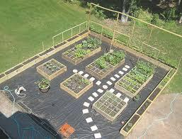 vegetable garden design layout stylish small garden layout
