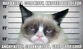 Bad Kitty Meme - bad kitty by nick bruel