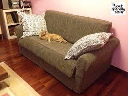 gatti divani tessuto contro artigli gatto cat friendly sofa