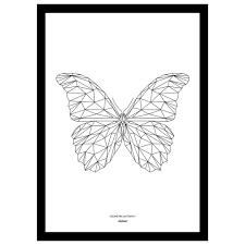 looking for feedback on math science design the butterfly
