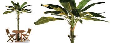 Tiki Patio Umbrella Banana Leaf Patio Umbrella Tree The Green