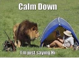 Hi Memes - calm down i m just saying hi meme on me me
