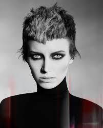 joanne d arc haircut 356 best hair to love images on pinterest short hairstyle short