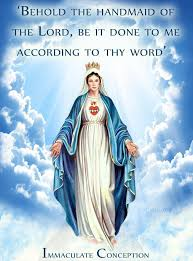 Mary Meme - your daily inspirational meme immaculate conception of the blessed