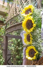 sunflower wedding decorations sunflower wedding decorations babys breath flowers stock photo