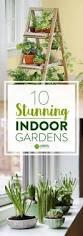 create a simple diy indoor herb garden in under 10 minutes