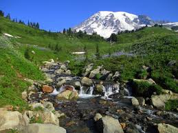 Great America Park Map by Mount Rainier National Park Wikipedia