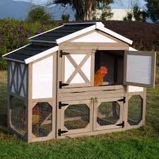merry products country style chicken coop hayneedle