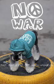 those polka dots are so fetch shop ed ellen degeneres only at 9 best dog fedora images on pinterest dog pet clothes