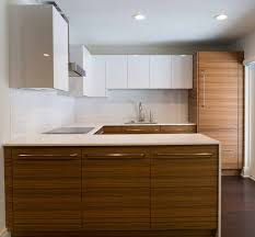 zebra wood kitchen cabinets zebrawood kitchen remodel in rochester ny concept ii