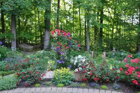 color in daniela u0027s garden in ohio fine gardening
