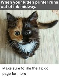 Printer Meme - when your kitten printer runs out of ink midway make sure to like