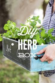 best 25 herb box ideas on pinterest herb garden pallet herb