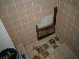 Remove Mold From Walls In Bathroom Impressive Mold Ceiling Leak Removing Mold From Bathroom Ceiling