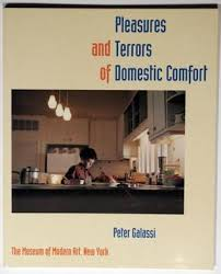 Pleasures And Terrors Of Domestic Comfort By Peter Galassi