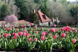 biltmore walled garden director travis murray shares his secrets