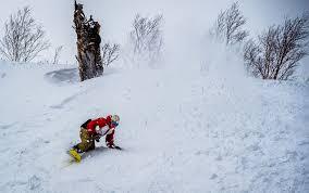 snowboards archives skis com blog