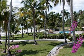abaco resort map abaco resort boat harbour marina the official site of