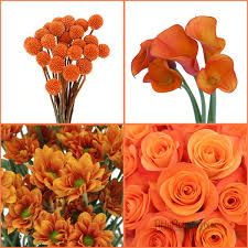 Flowers For November Wedding - orange you glad it u0027s fall fiftyflowers the blog