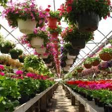 flowers wi felly s flowers garden center florists 6353 nesbitt rd