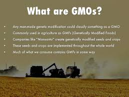 Gmos In Agriculture