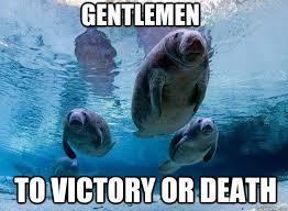 Manatee Meme - gentlemen to victory or death military manatee quickmeme