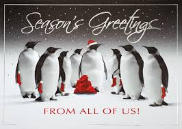 discount christmas cards jolly santa penguin greeting card discount greeting