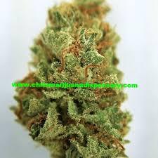 buy edible cannabis online django buy marijuana online for sale buy cannabis online buy