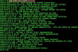 linux install apk 10 alpine linux apk command exles nixcraft