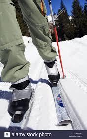 cross country ski track snow track cross country skier detail