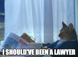 Lawyer Cat Meme - after winning an argument fixed imgflip