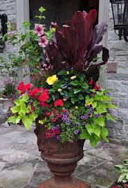 Summer Flower Garden Ideas - 740 best container gardening images on pinterest gardening