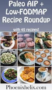 Fod Map Paleo Aip Low Fodmap Recipe Roundup 45 Recipes