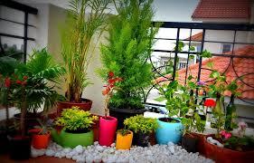 gorgeous apartment balcony garden design ideas small apartment