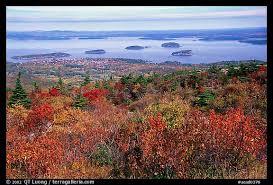 fall foliage acadia national park leaf peeper u0027s delight