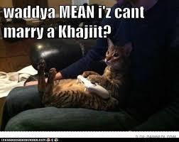 Khajiit Meme - skyrim khajiit meme khajiit best of the funny meme