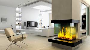 fine long narrow living room with fireplace in center decorating a
