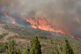 Definition For Wildfire by Wildfires Ravage Northern California With Shocking Speed Cbs Detroit