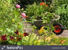 Summer Gardening - nature landscapes summer garden with flowers and wheelbarrow