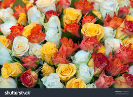 Multicolor Roses Bunch Multicolor Roses Flower Market Counter Stock Photo 119126818