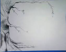how to draw a tree drawing how to u0027s