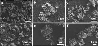 hierarchical design and control of nace wo 4 2 crystals